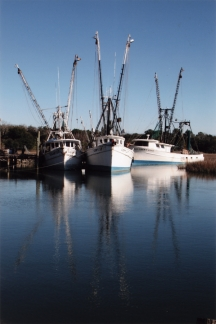 Three Shrimp Boats