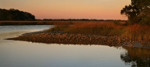 Copper-Colored Sunset over the Marsh