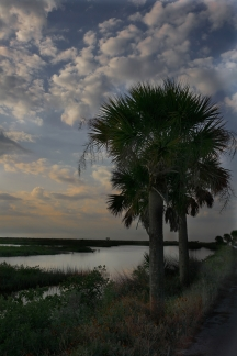 Black Point Drive, Cape Canaveral