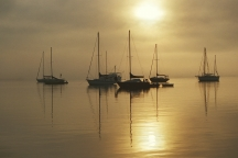 Sunrise, Fog, and Sailboats