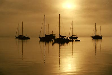 Hookey Hamilton Photography: St. Augustine Harbor on a Foggy Morning